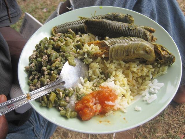hassa curry, bora & rice - amerindian heritage, annai north rupununi guyana