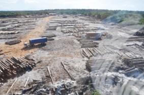 bai shan lin log yard kwakwani